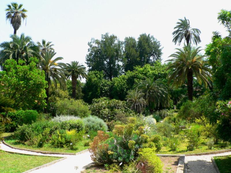 Orto Botanico di Roma - Giardino Mediterraneo