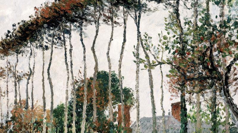 Palazzo Bonaparte - Impressionisti segreti