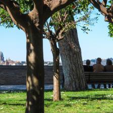Parco Savello o Giardino degli Aranci