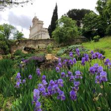 Vista Gianicolo da Orto Botanico