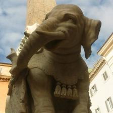 Pulcino della Minerva - Foto sovrintendenza capitolina