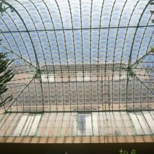 Orto botanico - Foto Turismoroma L. Dal Pont
