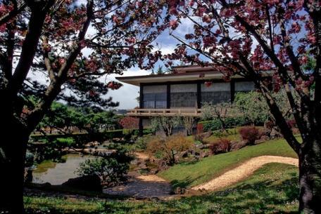 Istituto Giapponese di Cultura-Foto sito ufficiale Beni Culturali on line