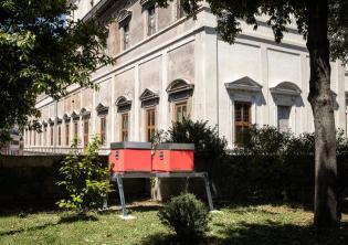 Foto Alberto Novelli - Courtesy Gallerie Nazionali di Arte Antica, Galleria Corsini, Roma
